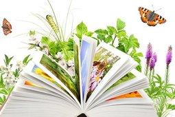 Книжная выставка «Книги для прочтения летом»