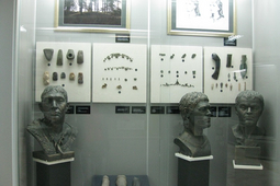 Экспозиция «Древние обитатели Чувашского края по данным археологии и палеонтологии»