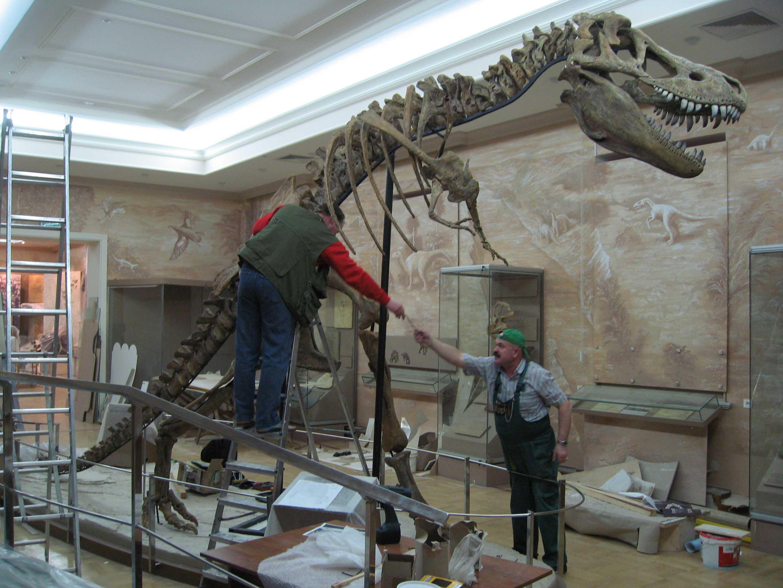 Палеонтологический музей им. Ю.А. Орлова РАН