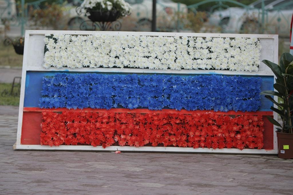 Как сделать из цветов российский флаг