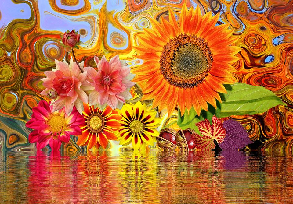 Конкурс рисунков «Цветок для клумбы»