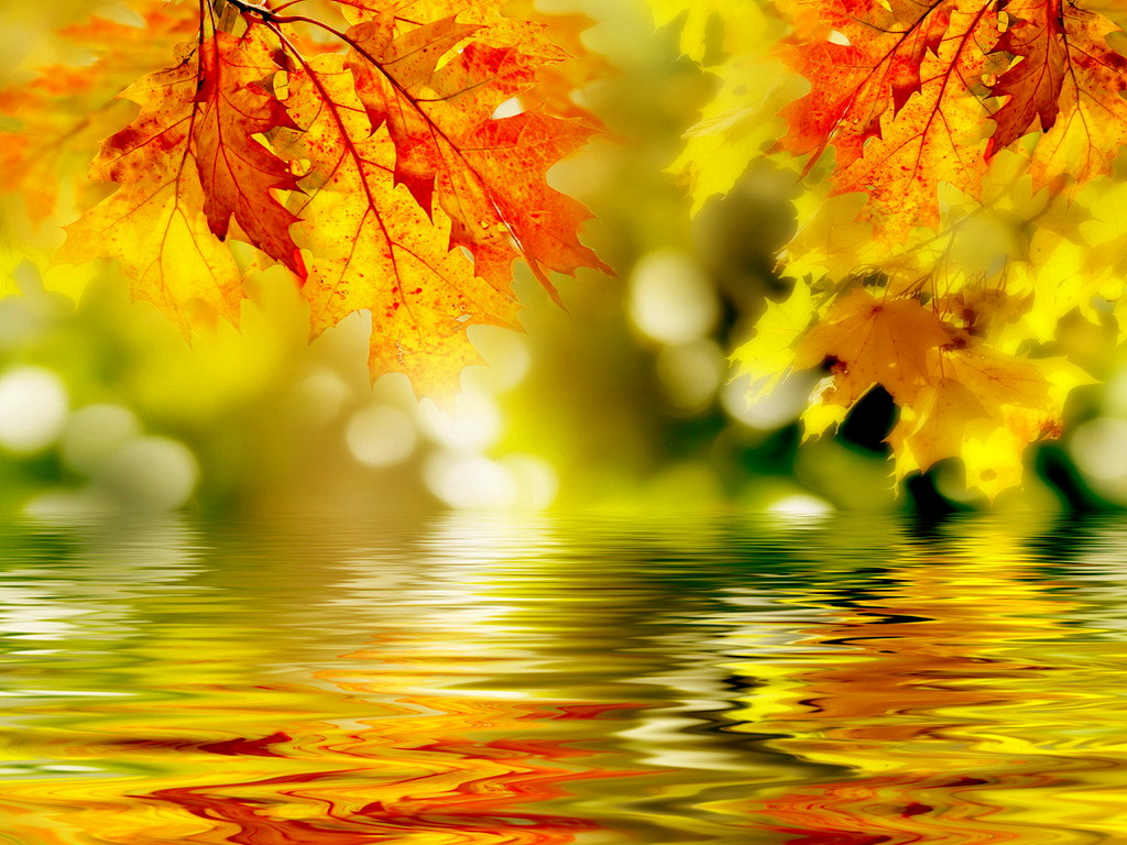 Поздравление учителей с осенью