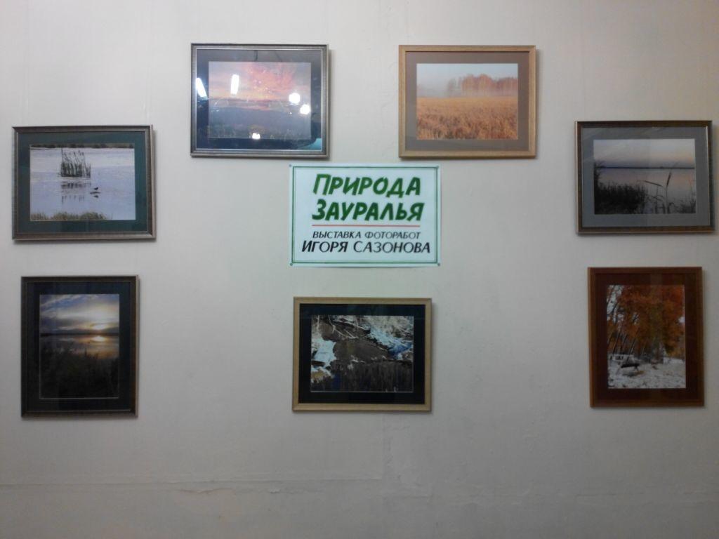Выставки курган