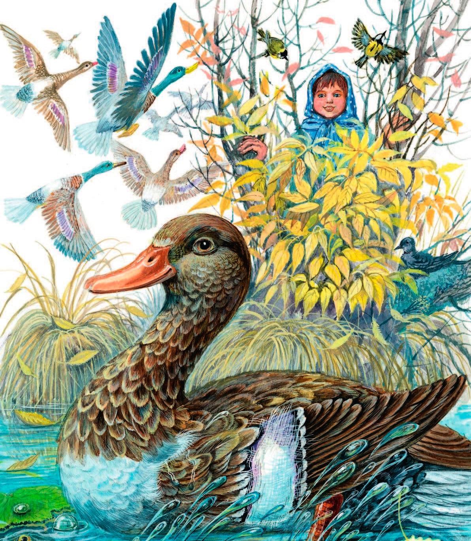 Сказка с картинками про птичку