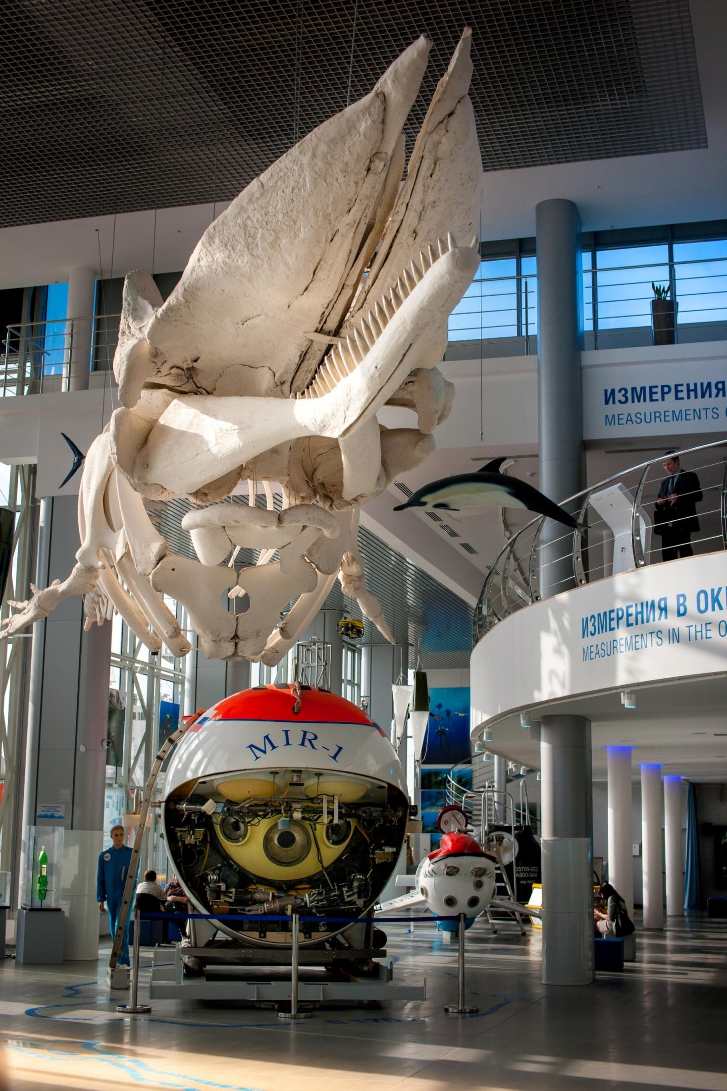 Главный корпус Музея Мирового океана